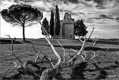 Toscana - Val d'Orcia - Vitaleta (Luigi Alesi) Tags: toscana italia italy tuscany siena val dorcia san quirico pienza chiesa vitaleta bianco e nero black white bn bw paesaggio landscape scenery alberi trees nikon d750 raw