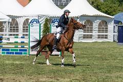 A9907878_s (AndiP66) Tags: martinameyer grueb mauensee luzern nevada springen hindelbank jegensdorf 2017 29april2017 pferd horse schweiz switzerland kantonbern cantonberne concours wettbewerb horsejumping equestrian sports springreiten pferdespringen pferdesport sport sony alpha sonyalpha 99markii 99ii 99m2 a99ii ilca99m2 slta99ii sony70400mm f456 sony70400mmf456gssmii sal70400g2 amount andreaspeters april