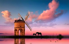 pink (Wigsbuy Reviews) Tags: wigsbuyreviews reviewswigsbuy nature beauty pink sky cloud horse lake