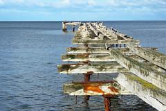 Punta Arenas / Estrecho de Magallanes / Chile (CarolinaCalquin) Tags: carolina calquin fotos photos puerto natales region magallanes patagonia chilena chile travel viajes turismo muelle viejo punta arenas estrecho de
