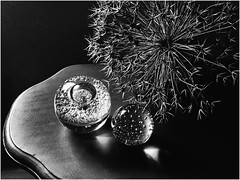 STILL LIFE (Ageeth van Geest) Tags: bubbles smileonsaturday sos monochrome bw blackandwhite allium glazenbol glas bloem flower glass stilllife stilleven
