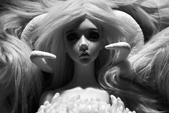 (Melancholy-Dreaming) Tags: wild blackandwhite bw flower beautiful doll pretty spirit goddess horns free fantasy bjd priestess balljointeddoll mythic souldoll paratiisi soulzenith