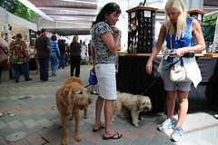 IMGL3344 (komissarov_a) Tags: ocean life friends dog pets love water animals training canon fun photo sand husky play friendship shepherd streetphotography rottweiler terrier management together precious boxer doberman mansbestfriend rgb relationships protection saintbernard investment partnership defenders pittbull pinscher alike noble  nickname owners dogsowners breeds               5dm3  komissarova