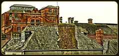 P1390638  Brewers Quay..Weymouth.. (Tadie88) Tags: rooftops buidings vividimagination tonemapping weymouthbrewery brewersquayweymouthdorset
