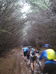 Climbing the muddy tunnel through the trees (neil.finnes) Tags: dorset rough brecon beacons riders