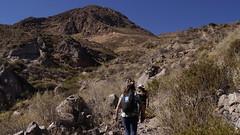 Jornada SP Putre junio 2013 trekking