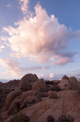 Jumbo Rocks (DerickCarss) Tags: california park ca usa west tree america coast colorado unitedstates desert joshua national mojave np