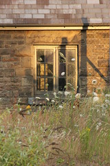 Lock Keepers Cottage (anorangebus) Tags: sunset shadow abandoned overgrown bay industrial lock tiger cottage cardiff tiny listed relic keepers