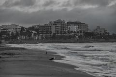 Sunrise at  Sant Lloren beach (bortescristian) Tags: travel sea 2 vacation sun holiday beach sunrise canon photography eos rebel photo spring spain sand foto f