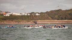 20130901_29241 (axle_b) Tags: haven wales club river yacht south rowing longboat regatta milford celtic pembrokeshire milfordhaven cleddau pyc gelliswick celticlongboat pembrokeshireyachtclub canon5dmk2 70200lf28l welshsearowing