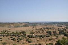 Agrigento (Pellufa) Tags: italy greek italia sicily sicilia agrigento templi grego pellufa