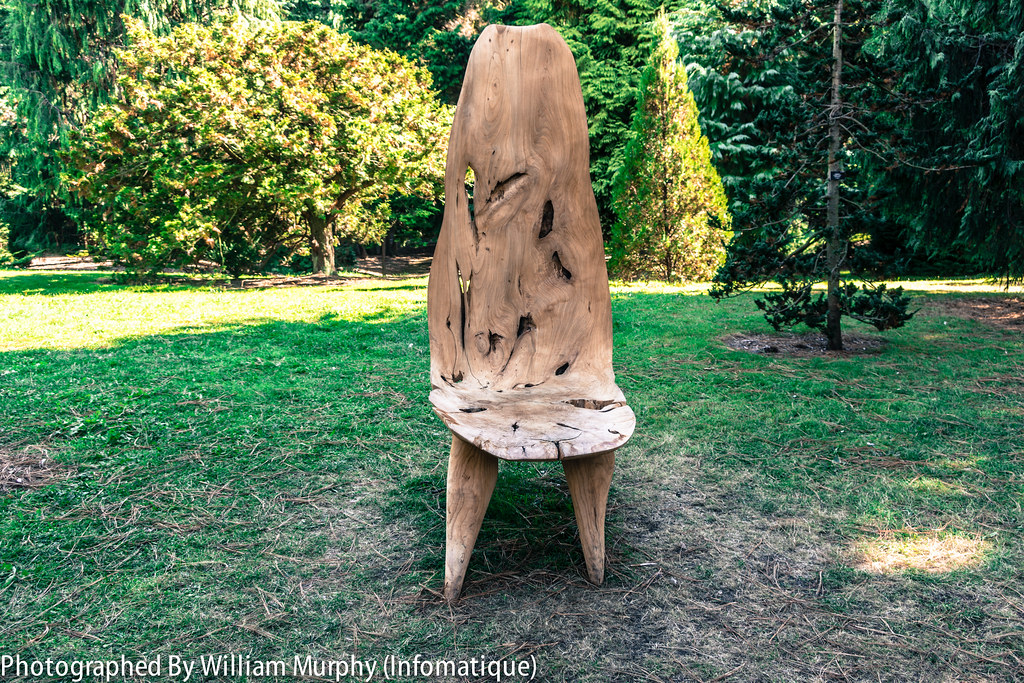 The Flowering Chair By Eoin Byrne And Michael Kelly - Sculpture In Context 2013 In The Botanic Gardens
