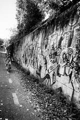 dalla-bici-9 (Sebastiano Pupillo) Tags: rome roma bike bici bikelane bicicletta montesacro fromthebike qbettocom