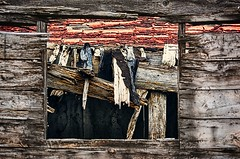 Window on the World (Richard Adams Photography) Tags: wood ontario canada fall photo airport nikon adams wwii richard weathered picton hangers 2013 cfbpicton richardadams d7100 pictonairport camppicton