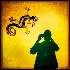 Shadow Photographer (Ba®ky) Tags: california shadow house colors yellow japan metal asian weird photographer arty artistic vibrant jesus elvis surreal kitsch lizard wacky cartoonish iphone 芸術 سكس wowiekazowie iphoneography ba®ky barkyvision