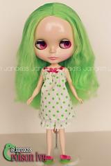 Poison Ivy (Jana RM) Tags: birthday ivy gift amaryllis blythe poison prima dolly unboxing