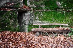 Autumn Bench (drefsmichael) Tags: stone canon lens eos leaf woods romantic kit 1855mm wald bltter moos romantisch 1100d