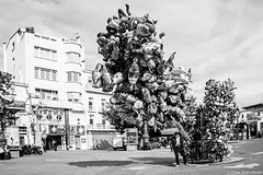 Balloon seller in the Mistral (EGLondres) Tags: bw automne balloons vent blackwhite streetphotography windy streetphoto provence ballons noirblanc aubagne mistral