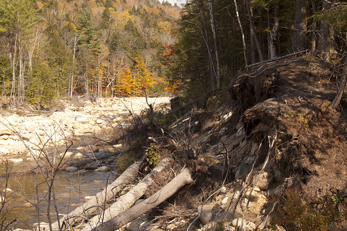 Mad River Fall 2013 (14)