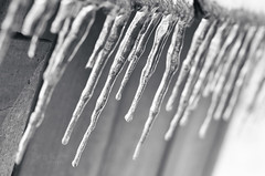 Frozen (Sydney Wallace Photography) Tags: winter cold ice water drip icy icey icesickles