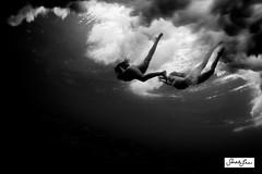 sarahlee_underwater_slow_shutter_5941.jpg (SARA LEE) Tags: abstract hawaii women underwater dusk motionblur slowshutter kona backround sarahlee seaclouds underwaterslowshutter hisarahlee sarahleephotography underwatermotionblur