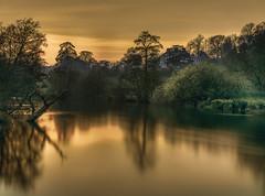 No Fishing (nalamanpics) Tags: longexposure trees sunset colour reflections river landscape countryside artistic striking manfrotto slowexposure riverexe canonef24105mmf4lisusm impressedbeauty leebigstopper manfrotto441carbonone infinitexposure
