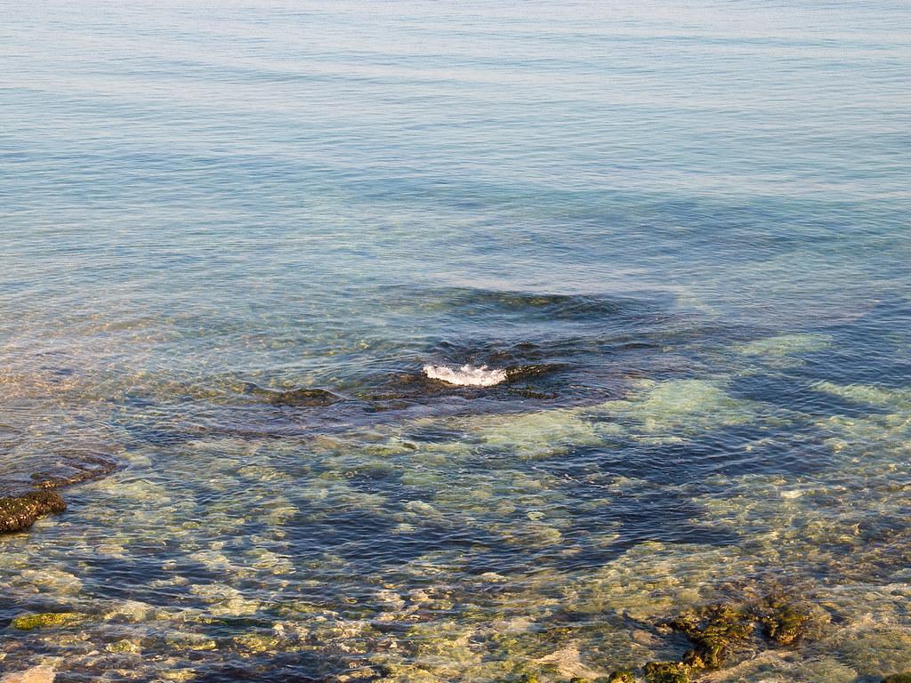 фото: Waters of Black sea