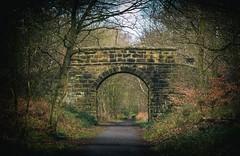Stoney Road bridge (Blaydon52C) Tags: chopwell woods waggonway industrial consettironcompany ncb railway rail train coal mining history durham highspen derwent blaydon rowlandsgill derwentvalley riverderwent