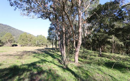 Lot 1 288 Martins Creek Road, Paterson NSW