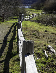 Split rails (Tony Tomlin) Tags: crescentbeach bc fence splitrails