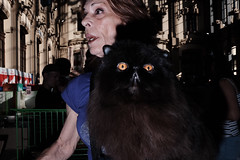 #03 -animalspirit (mdsmdsmds) Tags: cat flash eyes gata barcelona