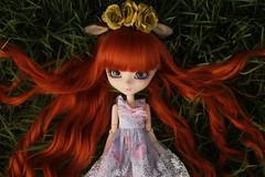 Little Deer (Bianca Hopkins) Tags: pullip doll obitsu 27cm rewigged rechipped cute groove la robe vert clair midori