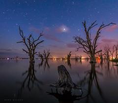 Lake Bonney (Mark McLeod 80) Tags: 2017 australia lakebonney markmcleod markmcleodphotography murryriver renmark sa southaustralia astro night barmera