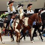 Mane Attraction Equestrian Drill Team thumbnail