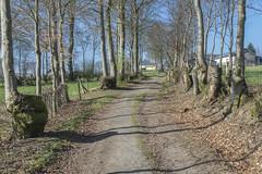 Monschau. Germany (Zinaida Belaniuk) Tags: monschau germany spring 2017