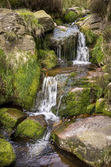 Moorland stream at Crowden (Keartona) Tags: rocky moorland stream rocks water flowing spring terrain landscape waterfall small moss derbyshire crowden peakdistrict england