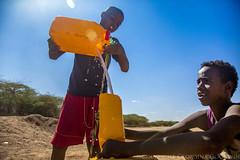 Somaliland_Mar17_0806 (GeorginaGoodwin) Tags: georginagoodwingeorginagoodwinimageskenyakenyaphotojournalistkenyanphotojournalist kenyaphotographer eastafricaphotographer kenyaphotojournalist femalephotographer idps refugees portraits portraitphotographer canon canon5dmarkiii canonphotos drought famine somalia somaliland malnutrition foodsecurity donorfunding aid foodaid wash health sanitation hornofafrica