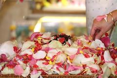 Ramanavami 2017 - ISKCON London Radha Krishna Temple Soho Street - 05/04/2017 - IMG_0668 (DavidC Photography 2) Tags: 10 soho street radhakrishna radha krishna temple hare krsna mandir london england uk iskcon iskconlondon internationalsocietyforkrishnaconsciousness international society for consciousness spring wednesday 5 5th april 2017 ramanavami lord sri jaya jai rama ram ramas ramachandra bhagavan appearance day festival ramayana raghupati raghava raja patita pavana sita