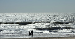 The sea (SteveJM2009) Tags: strollers walkers family bike cyclist bicycle sun light reflection sea beach seaside sand shore branksome poole dorset uk march 2017 stevemaskell