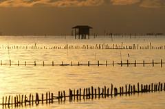 Morning sunshine (Pond Pisut) Tags: landscape landscapelover nature naturelover natural sea seascape silhouette morning sunset sunshine sunrise cloudy