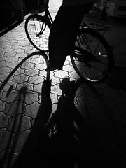 Street Fragments #259 - Osaka Daydream (Yoshi T. (kagirohi)) Tags: japan japanese osaka senbayashi blackwhite bw street streetphotograph streetphotography alley fragment urban city cityscape snapshot ricoh gr ricohgr 日本 大阪 千林 千林商店街 商店街 白黒 モノクローム モノクロ 路上 ストリート ストリートフォト 都市 風景 都市風景 スナップ スナップ写真 リコー 断片 blackandwhite monochrome depthoffield