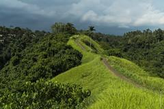 *** (shadobb) Tags: бали bali distagontfe1435 sony asia tropic sun sky clouds green view landscape travel