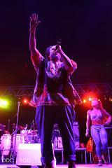 FREESTYLE FEST 2017-103 (REBIRTH GD PIX) Tags: freestylefest2017 allstarconcerts musicfestival timmyt bellbivdevoe lisalisa stevieb houseofpain arresteddevelopment naughtybynature trinere theenglishbeat staceyq debbiedeb chubbrock nocera rebirthgraphicdesigns concertphotography nikon
