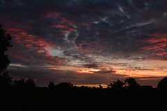 Endless days of summer (Images by Jeff - from the sea) Tags: nikon d7200 dusk tamronsp2470mmf28divcusd tamron2470mm clouds sunset twilight palmtrees redsunset bluesky storm sky bundaberg australia april 2017 7dwf 1500v60f 1000v40f
