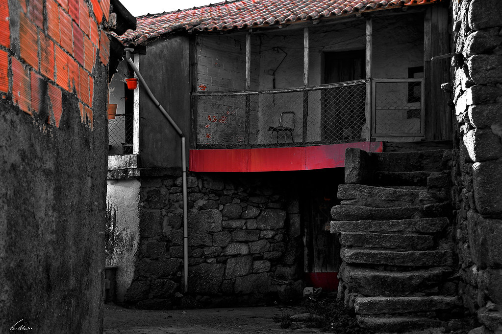 1600-assureiras-c (9)