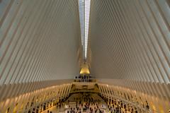 world trade center (josemipedro) Tags: wtc worldtradecenter santiagocalatrava newyork newyorkcity oculus nyc manhattan calatrava