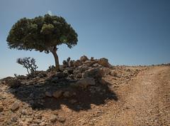324_3817 (smülli) Tags: kreta crete hellas island mittelmeer mediterranian griechenland