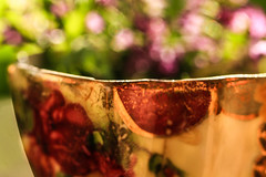 ..a bowl of bokeh followed by a good cuppa was her breakfast of choice.. (dawn.tranter) Tags: dawntranter bokeh bowl full breakfast cuppa choice sunlight colour