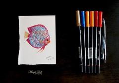 discus fish 1.jpg rs (Mingle Doll 鳴娃娃) Tags: tombow brushpen watercolor discusfish