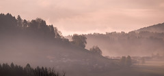Foggy carinthia (wigerl - herwig ster) Tags: fujixf18135mm fujixt1 austria jpeg licht light kärnten feldkirchen foto 2017 misty nebel morgen morning fujilove fuji foggy carinthia tiffen österreich europa europe